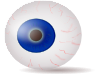 free vector Eyeball Blue Realistic clip art