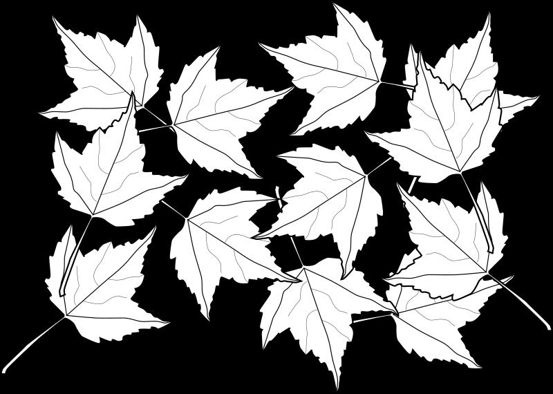 free vector Fall2010-13
