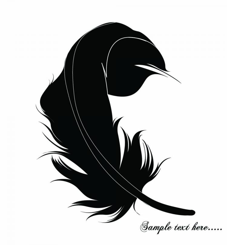 free vector Feathers 03 vector