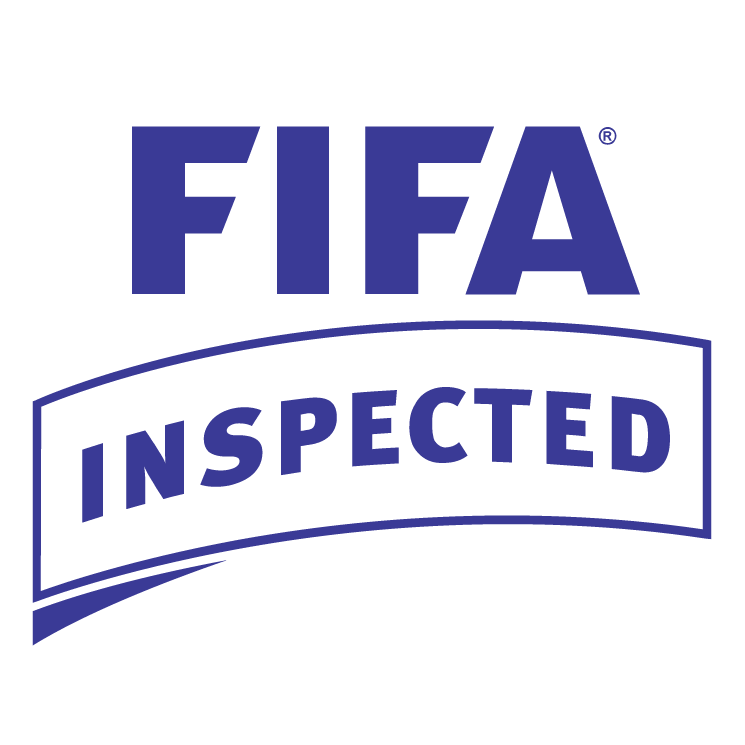 free vector Fifa inspected