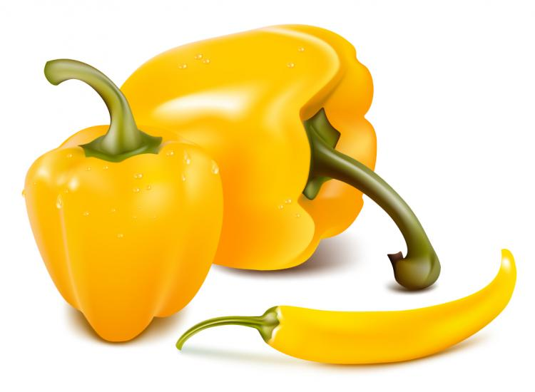 free vector Fine chili peppers vector