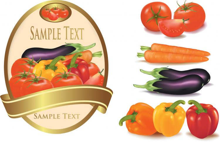 free vector Fine vegetables vector