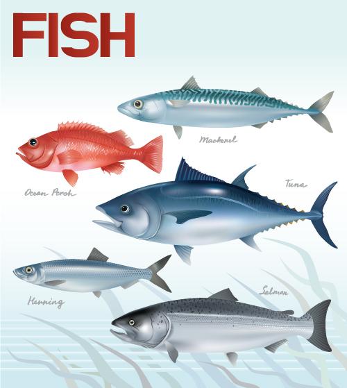 free vector Fish 01 vector