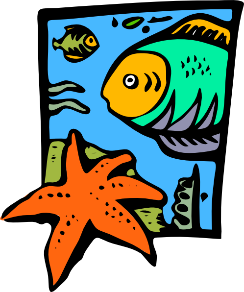 free vector Fish Marine Life Starfish clip art