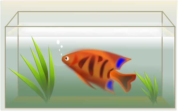 Clip Art Fish Tank Clip Art fish tank clip art free vector 4vector art