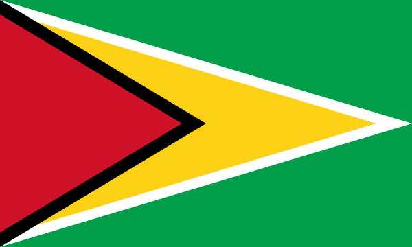 free vector Flag Of Guyana clip art