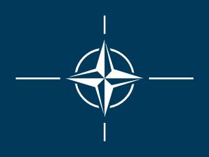 free vector Flag Of The North Atlantic Treaty Organization clip art