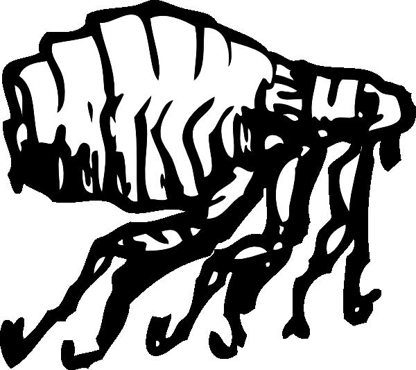 free vector Flea clip art