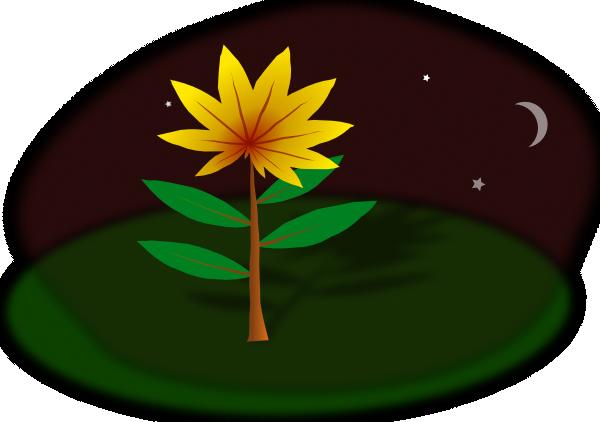 free vector Flower At Night clip art