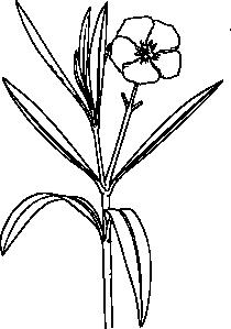 free vector Flower Bush clip art