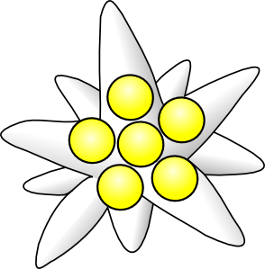 free vector Flower Circles clip art