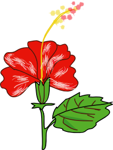 Flower hibiscus clip art 114875 free svg download 4 vector - Hibiscus images download ...