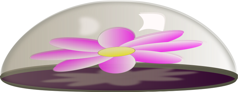 free vector Flower in Glass Paper Weight