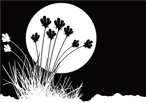 free vector Flowers and black-and-white vector