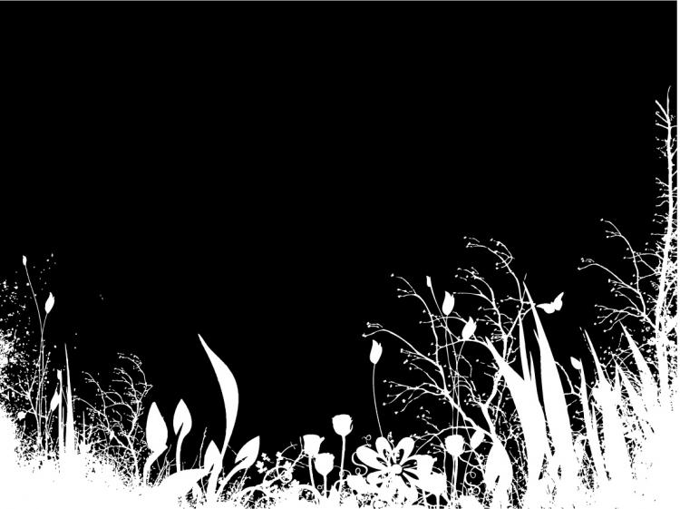 Flower Vector Black And White Flowers And Black And White