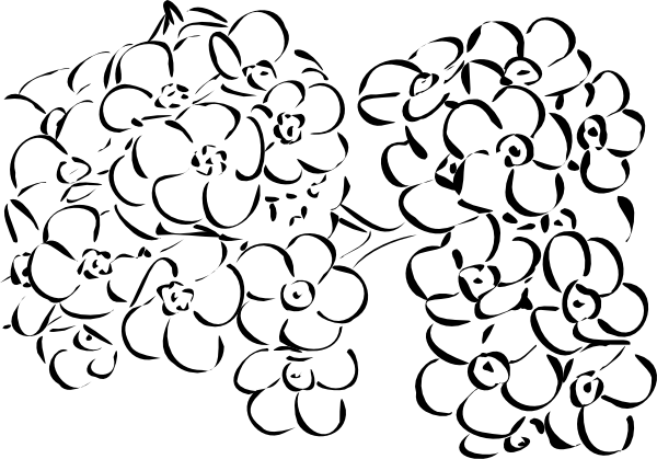 free vector Flowers Outline clip art