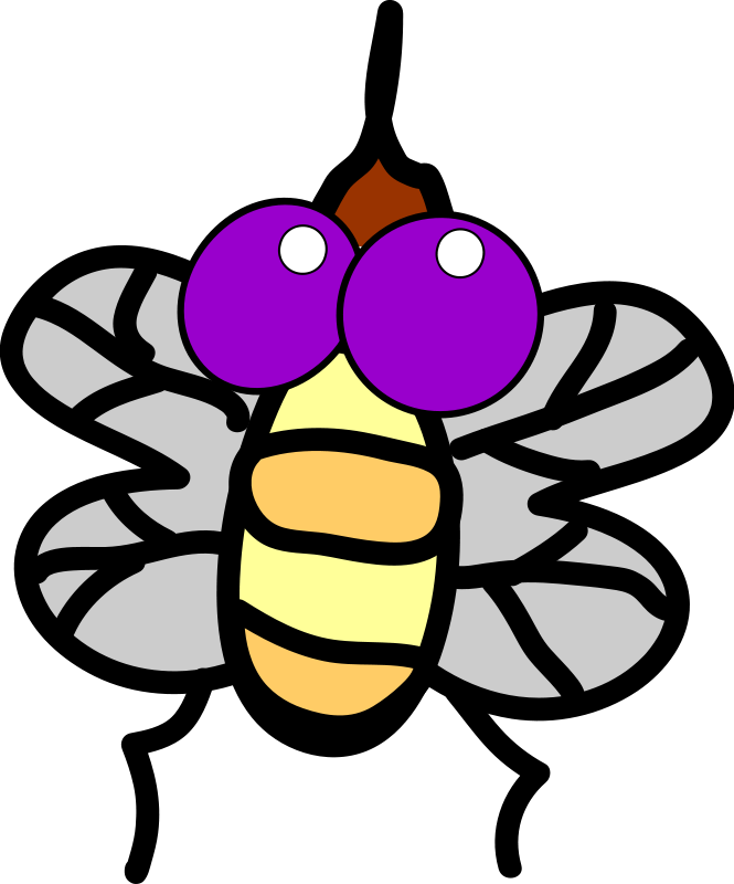 free vector Fly
