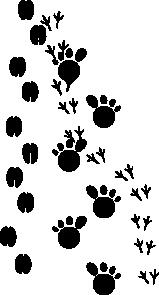 free vector Footprints clip art