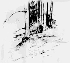 free vector Forest_trees_oberzeiring2004 clip art