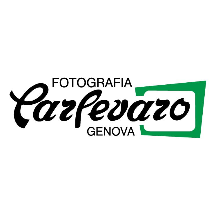 free vector Fotografia carlevaro
