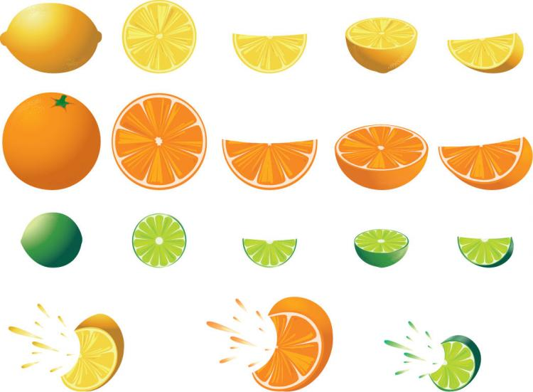 free vector Free Citrus Fruit Vector