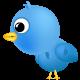 free vector Free Twitter Vector Set