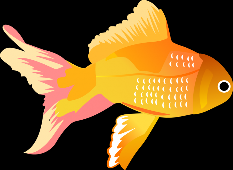 free vector Free Vector Fish Icons