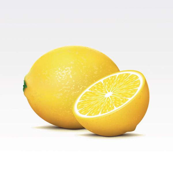 free vector Fresh fruits vector
