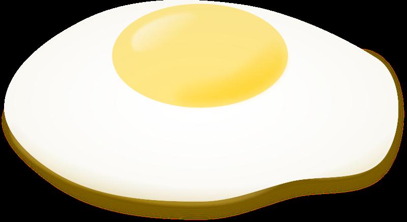 free vector Fried egg