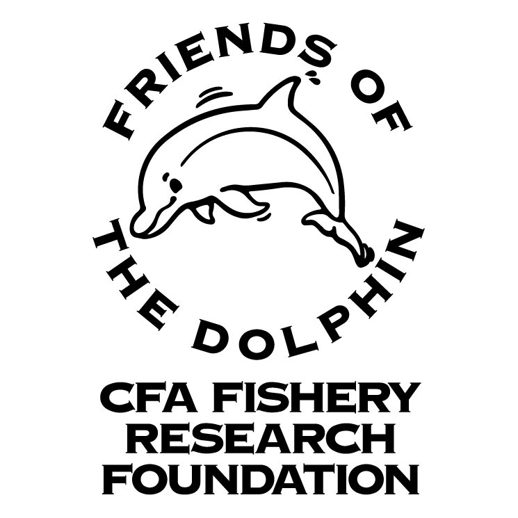 free vector Friends of the dolphin