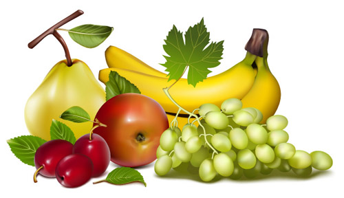 free vector Fruit and vegetable theme vector