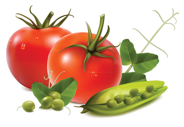 Fruits and vegetables vector Free Vector / 4Vector
