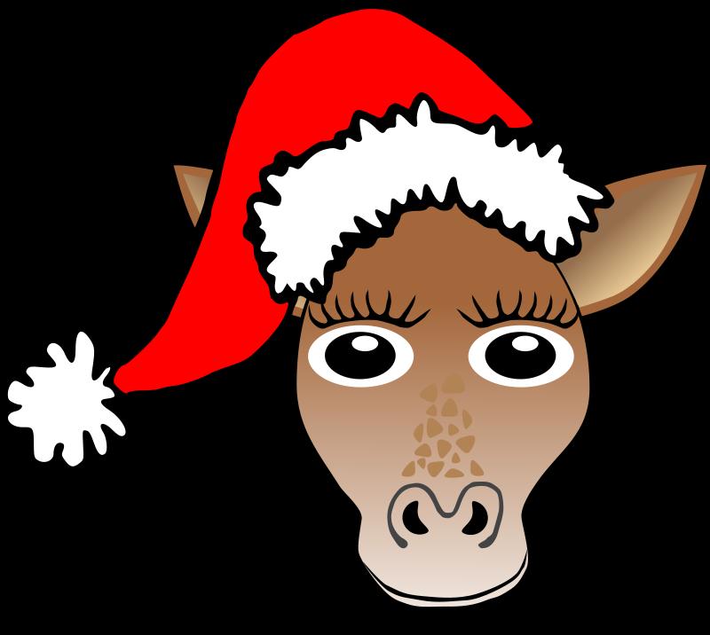 -giraffe-face-cartoon-with-santa-claus-hat_102921_Funny_Giraffe_Face ...