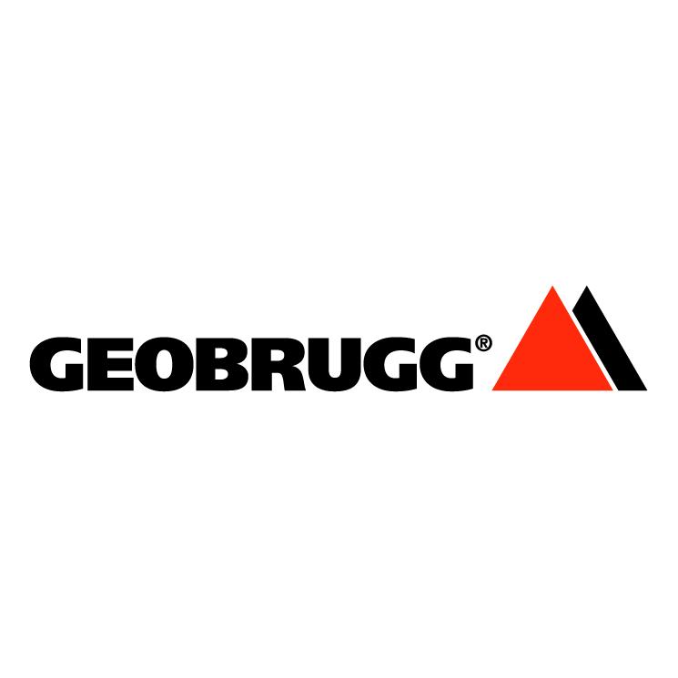 free vector Geobrugg