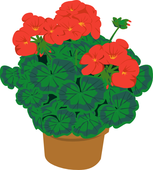 free vector Geranium In Pot clip art