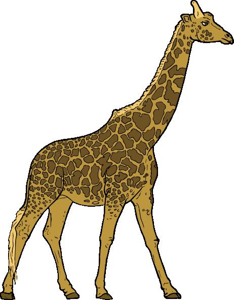 giraffe clip art free vector 4vector rh 4vector com free clipart of giraffes clipart picture of giraffe