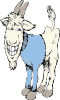 free vector Goat In A Sweater clip art