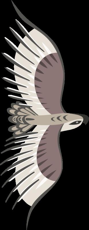 free vector Golden Eagle