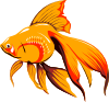 free vector Golden Fish clip art