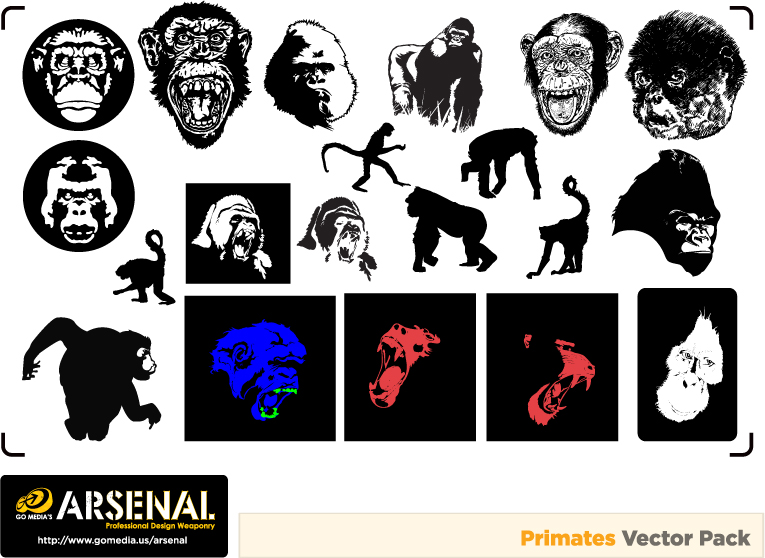 free vector Gomedia gorillas and monkeys produced vector