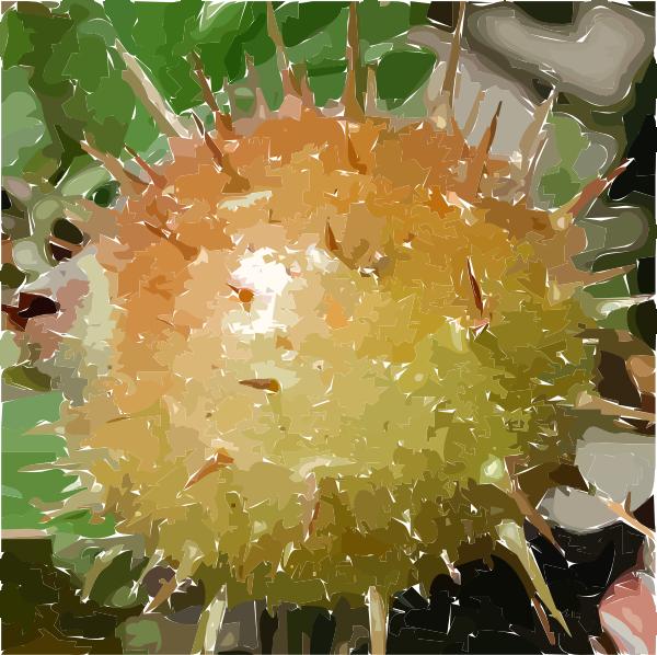free vector Gooseberry clip art