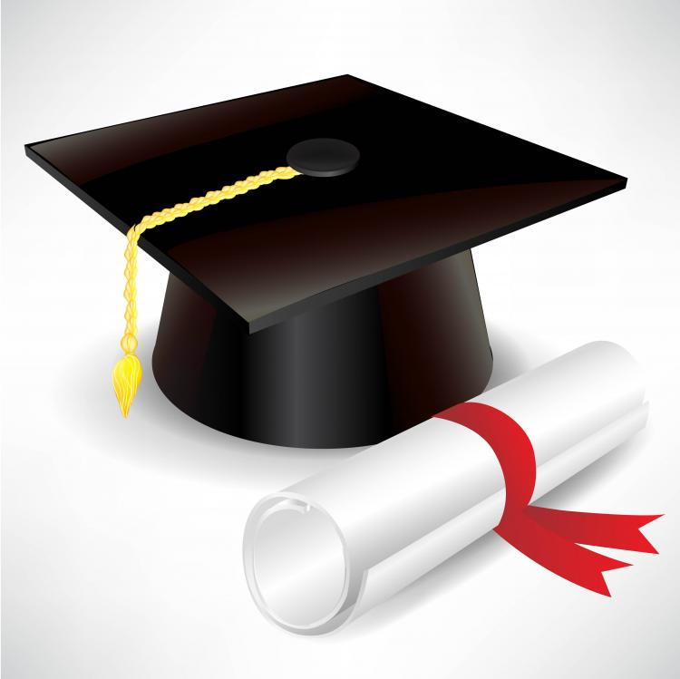Graduation cap and diploma vector Free Vector / 4Vector