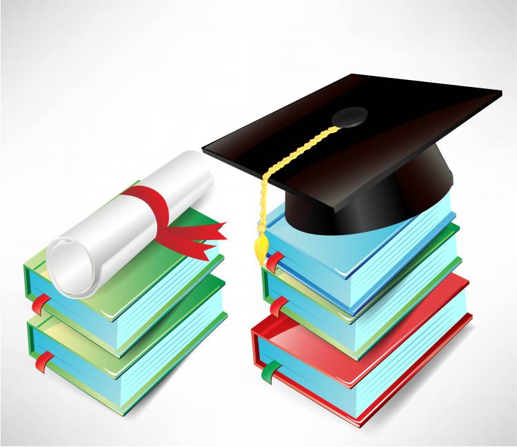 free vector Graduation cap and diploma vector