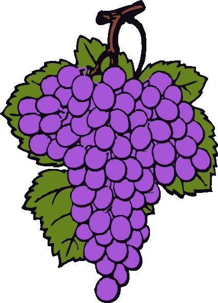 free vector Grape Cluster clip art