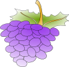 free vector Grapes clip art