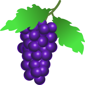 free vector Grapes Vine clip art