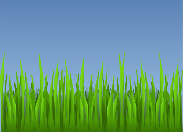 how to draw field of grass digital