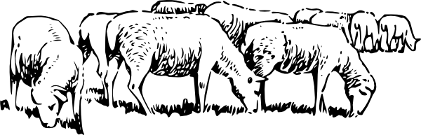 free vector Grazing Sheep clip art