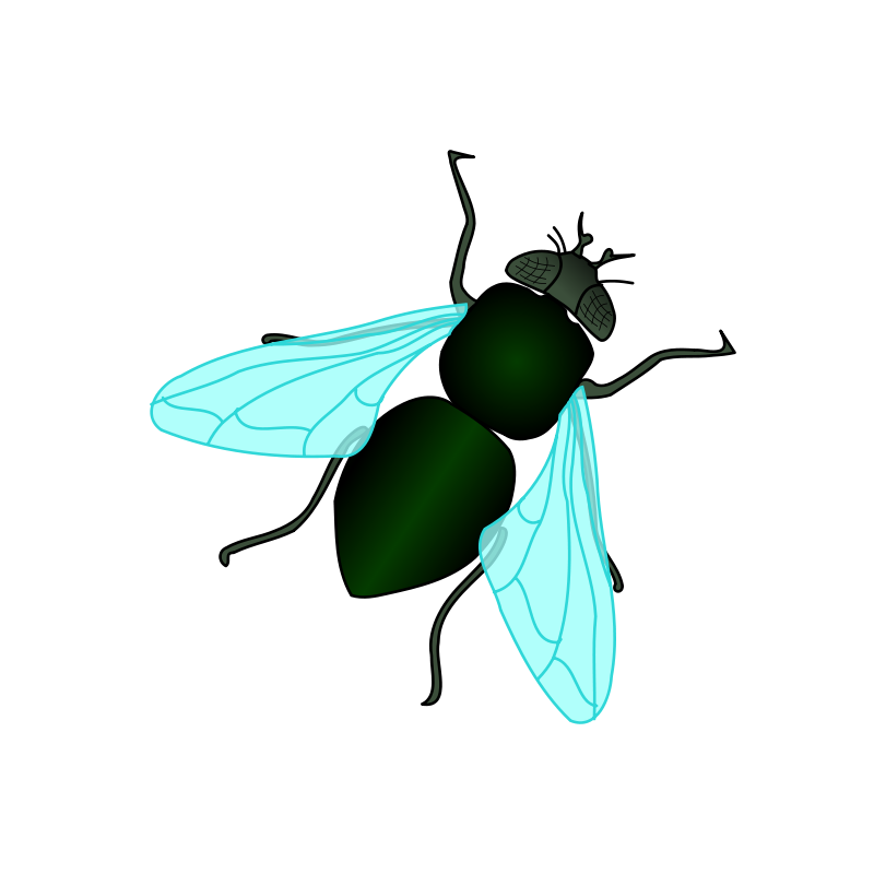 free vector Green House Fly