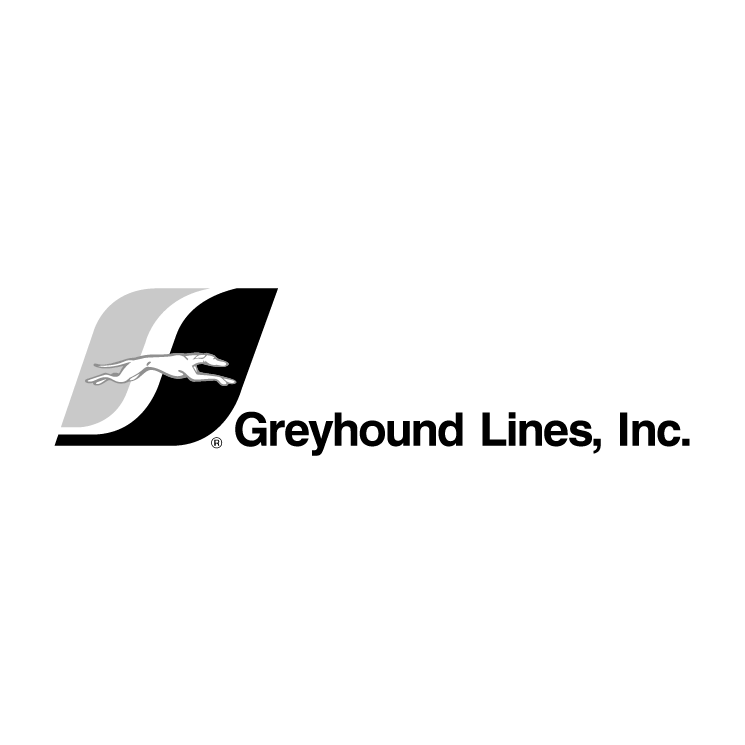 free vector Greyhound lines